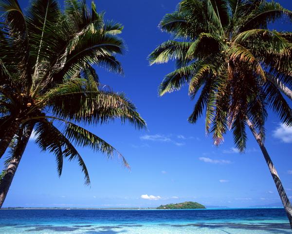 沙滩大海图片-自然风景图