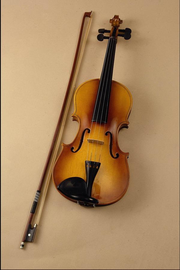 小提琴和琴杆 崭新 全手工制作 乐器世界-艺术-艺术,乐器世界图片图片