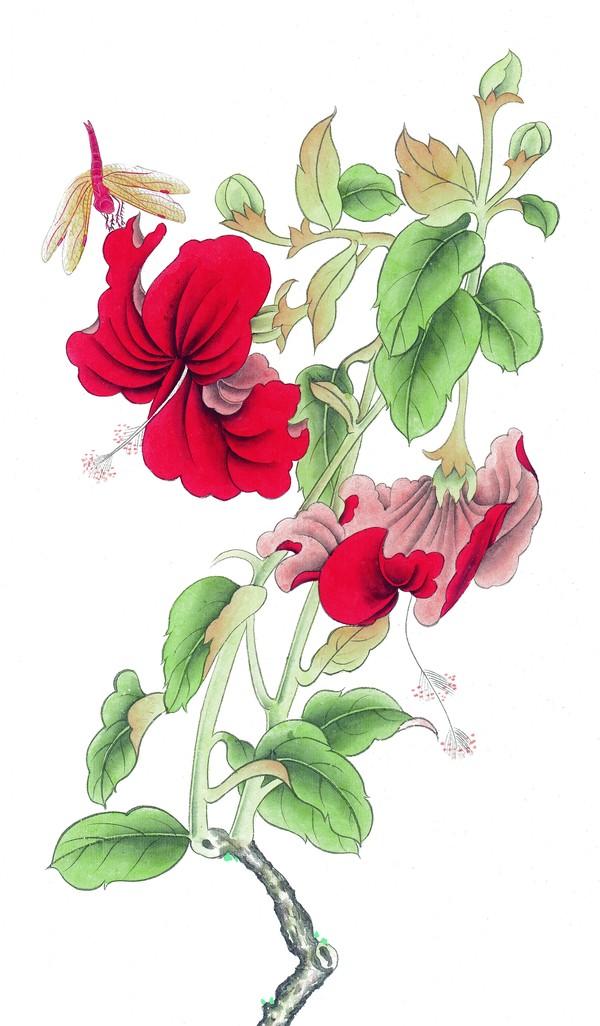 中国 花鸟/植物红花蜻蜓 工笔花鸟/中国国画/中国国画,工笔花鸟