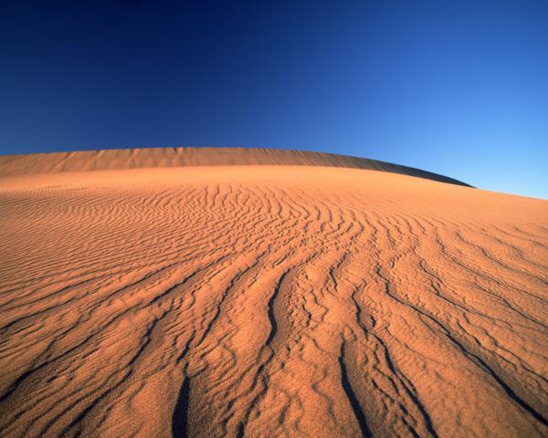 撒哈拉大沙漠ppt_教科版三年级上册《沙漠里的船》PPT课件1