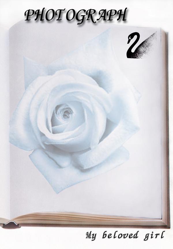 浪漫背景图,婚纱摄影图片,wedd