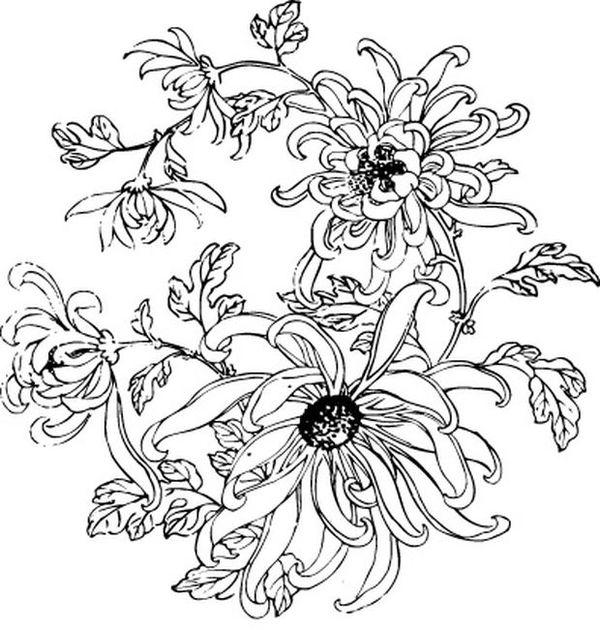 彼岸花纹身手稿图内容|彼岸花纹身手稿图版面设计