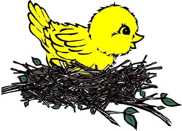 鸟类漫画图片-动物图 小鸟 鸟窝 鸟巢,动物,鸟类