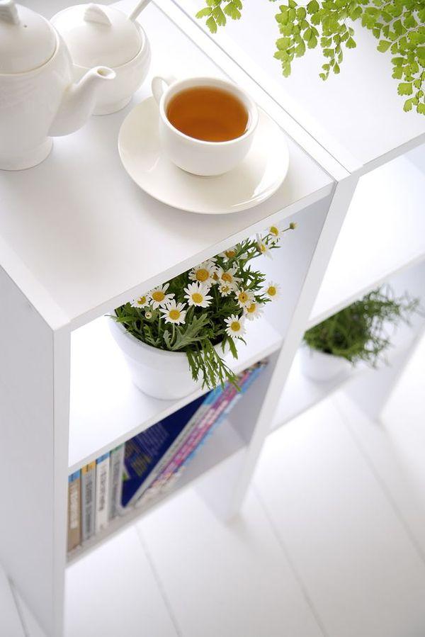 女性健康生活图片 人物图 茶杯 盆栽 书架