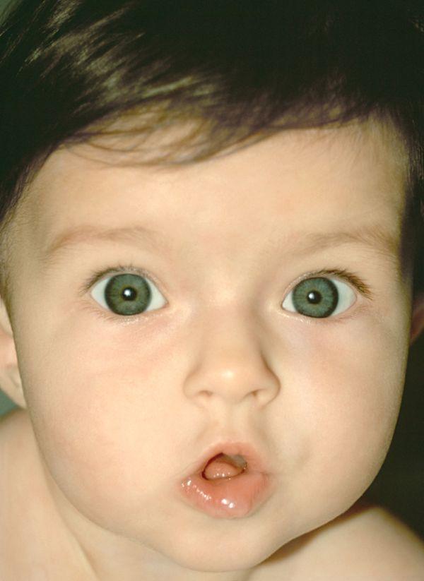 儿童婴儿表情-儿童教育图新生动态图片,迷路教路路路动表情包图婴儿图片