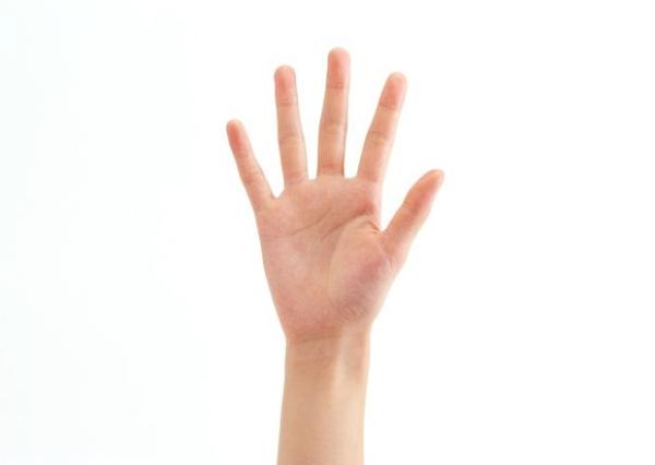 五根手指 手掌手势-身体器官-身体器官,手掌手势 五根手指 手掌手势-身体器官-身体器官,手掌手