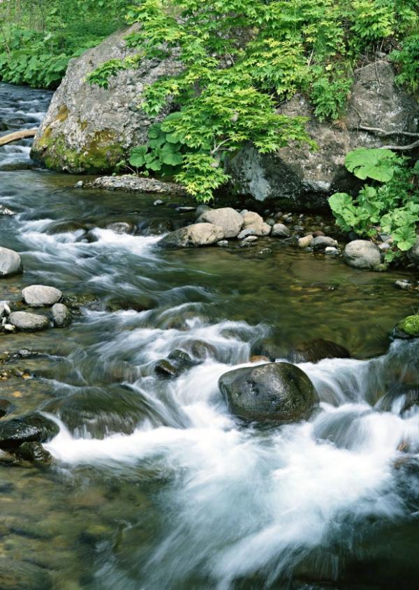瀑布水源0252