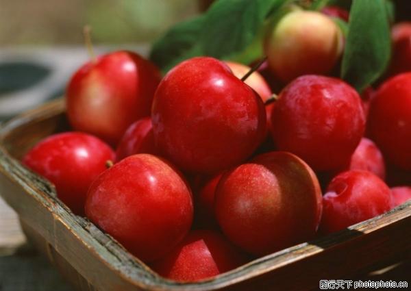 收获季节-水果食品-水果食品,收获季节